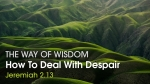 How To Deal With Despair